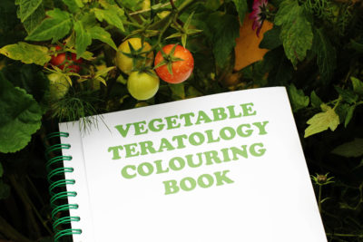 Vegetable Teratology Colouring Book, K. Verlag, Nina Canell, Robin Watkins